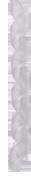 BENEFIT ( ベネフィット ) フレームプロテクター ( スパイラル ) クリア