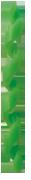 BENEFIT ( ベネフィット ) フレームプロテクター ( スパイラル ) グリーン