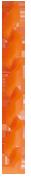 BENEFIT ( ベネフィット ) フレームプロテクター ( スパイラル ) オレンジ