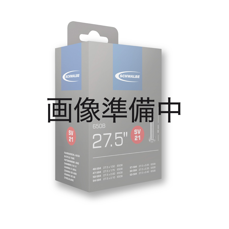 SCHWALBE(シュワルベ)TUBE 26 X 2.10-3.00 SV